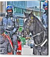 Badges And Horses Acrylic Print
