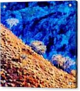 Baja California Coast - Sea Of Cortez Acrylic Print