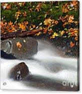 Balance Of The Seasons Acrylic Print