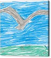 Bald Eagle Flying Acrylic Print