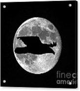 Bald Eagle Moon Acrylic Print