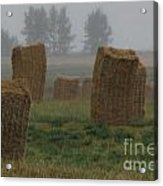 Bales For Sails Acrylic Print