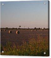 Bales In Peanut Field 1 Acrylic Print