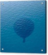 Balloon Shadow Acrylic Print