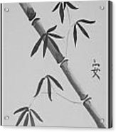 Bamboo Art In Black And White Acrylic Print