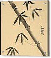 Bamboo Art In Sepia Acrylic Print