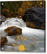 Banff - Autumn Creek Acrylic Print