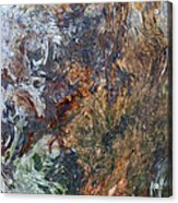 Bark Abstract Acrylic Print