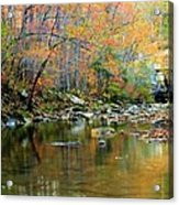 Barkshed Creek Toned Acrylic Print