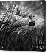 Barley And The Pump Mono Acrylic Print
