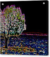 Barren Tree Acrylic Print