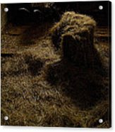 Barrow And Hay Acrylic Print by Miguel Capelo