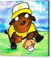 Baseball Dog 3 Acrylic Print