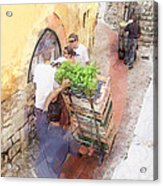 Basil Delivery In Eze France Acrylic Print