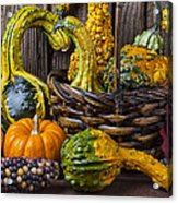 Basket Full Of Gourds Acrylic Print