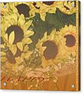 Basket Of Sun Shine Card Acrylic Print