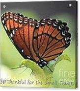 Be Thankful Acrylic Print by Carol Groenen