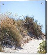 Beach Sand Dunes I Acrylic Print