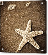 Beach Star Acrylic Print