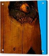 Bear In Log Acrylic Print