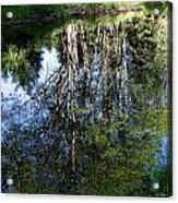 Bear River Reflection Acrylic Print