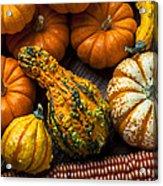 Beautiful Autumn Acrylic Print