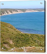Beautiful Coastline Of Point Reyes California . 7d16050 Acrylic Print by Wingsdomain Art and Photography