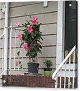 Beautiful Floral Entrance Acrylic Print