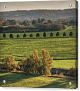 Beautiful Landscape With Trees And Field Acrylic Print