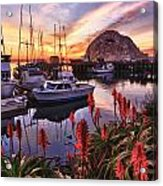 Beautiful Morro Bay Acrylic Print