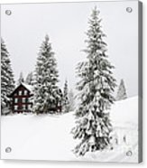Beautiful Winter Landscape With Trees And House Acrylic Print