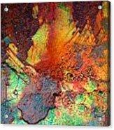 Beauty Between  Acrylic Print