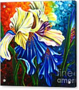 Beauty Of Blossom Acrylic Print by Uma Devi