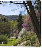 Beauty Of Spring Acrylic Print