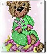 Becky Bear Acrylic Print