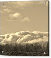 Bed Of Clouds Over Georgia Meadow Acrylic Print