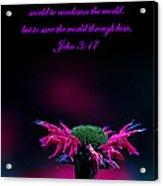 Bee Baum John 3 17 Acrylic Print