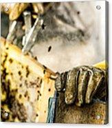Bee Keeper Acrylic Print