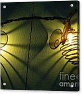 Bee Reflections Acrylic Print