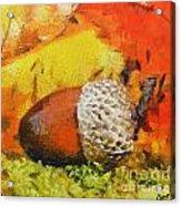 Beechnuts Acrylic Print