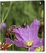 Beetlejuice Acrylic Print