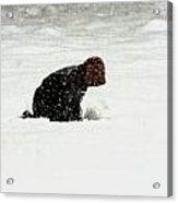 Beginning Of A Snow Man Acrylic Print