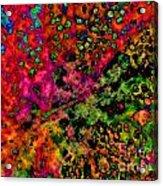Begonia Leaf On Acid Acrylic Print