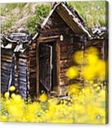 Behind Yellow Flowers Acrylic Print by Heiko Koehrer-Wagner