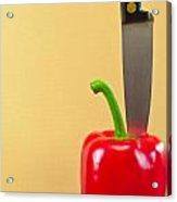 Bell Pepper Acrylic Print