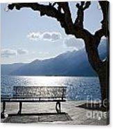 Bench And Tree On An Alpine Lake Acrylic Print