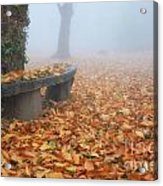 Bench In The Fog Acrylic Print