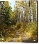 Bend In The Trail Acrylic Print