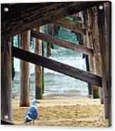 Beneath The Pier II Acrylic Print