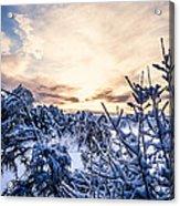 Bergen Winter Acrylic Print